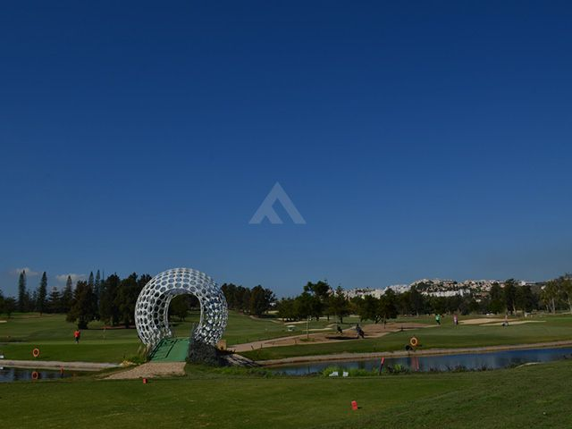 banner golf